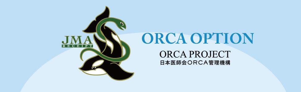ORCAオプション